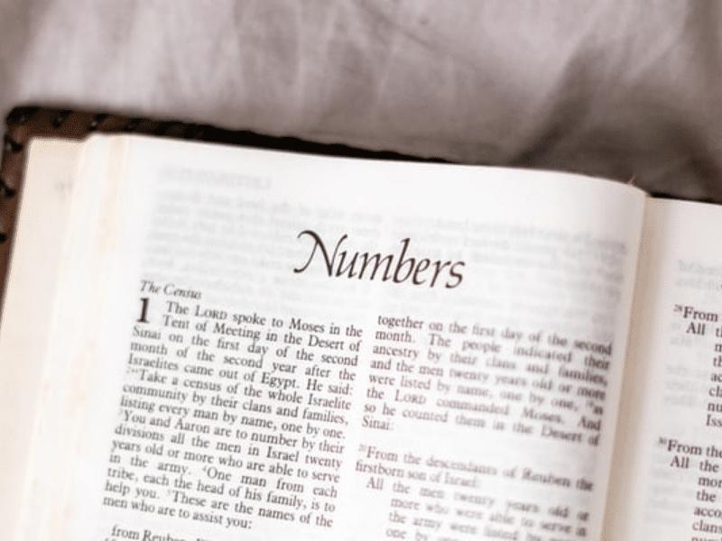 regala-miistico-11-numerologia